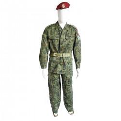 Polish Pantera  Airborne Set